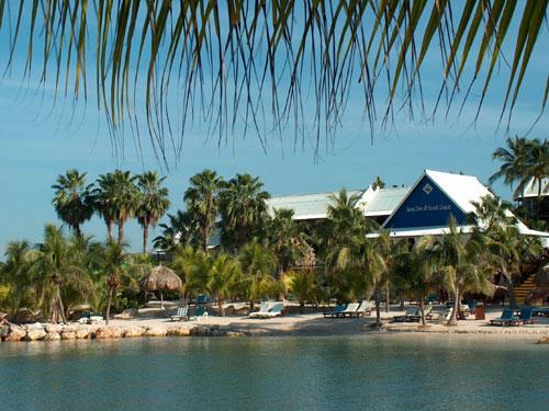 Lion Beach & Dive resort