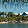 curacao-acco-lions-dive-en-beach-resort_4