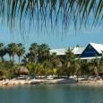 curacao-acco-lions-dive-en-beach-resort_4
